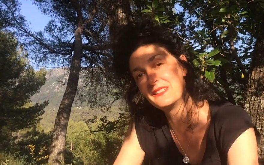 A l'ombre des oliviers en fleurs – épisode 3